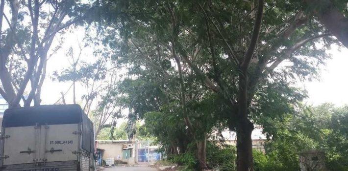 Bán lô đất đường nhựa 15m nội bộ ngay TTHC Nhà Bè
