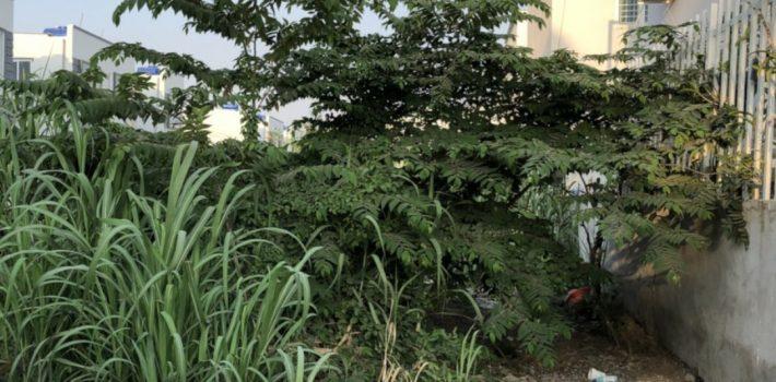 560m2 đất xây nhà vườn xã Nhơn Đức chỉ 2.9 Tỷ