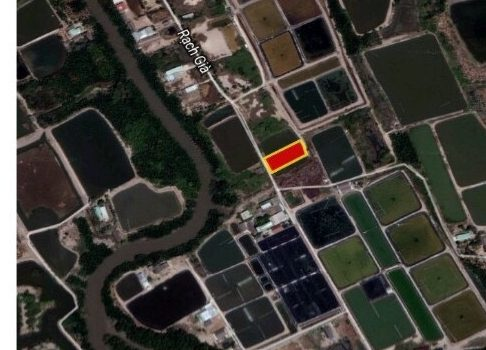1000m2 đường oto Rạch Già xây nhà vườn đẹp chỉ 1.55 Tỷ