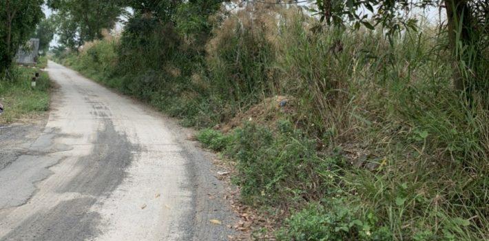 1000m2 đất cây lâu năm có 300 thổ cư mặt tiền đường 10m Long Thới